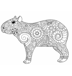 Capybara coloring for adults vector image