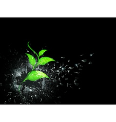 green sprout in broken glass vector image