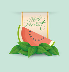 watermelon natural product label design vector image vector image