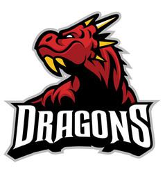 drago head mascot vector image
