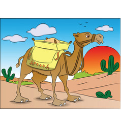 a loaded camel vector image