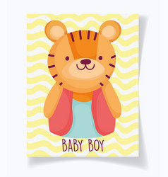 Boy or girl gender reveal its a cute tiger vector