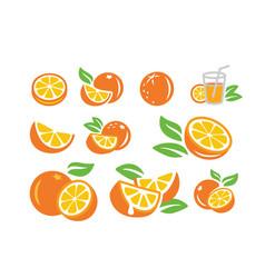 Fresh orange fruits vector