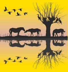 horses near the lake and cormorants vector image
