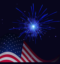 white blue fireworks and united states flag vector image