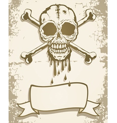 Skull scroll vector image