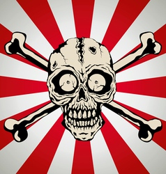 Skull smile vector image