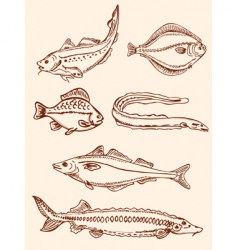 set of vintage saltwater fish vector image vector image