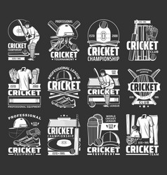 Cricket sport icons with balls bats and players vector