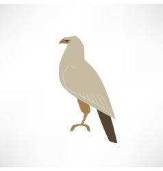 Eagle vector image