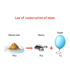 law conservation mass principle mass vector image