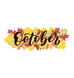 october script with decorative white and vector image