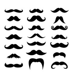 set men mustaches for design photo booth vector image