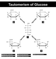 Tautomerism glucose vector
