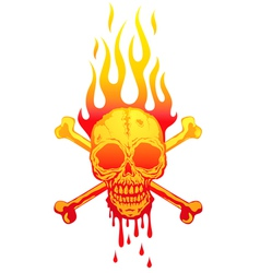 Skull fire white vector image