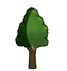 tree foliage rough bark stem shadow vector image