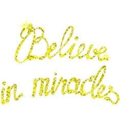 Believe in miracles tinsels vector