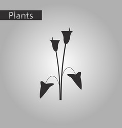 Black and white style icon of flower calla vector