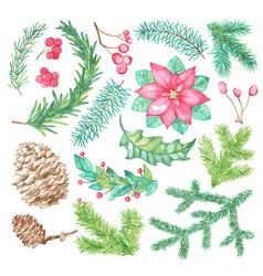 christmas and new year botanical set vector image