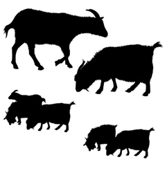 Collection of goat silhouettes vector