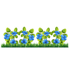 Isolated blue flower for decor vector