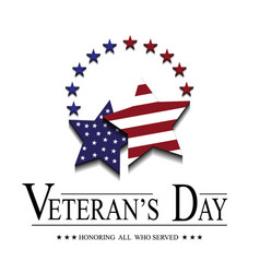stars with usa flag for veterans day vector image