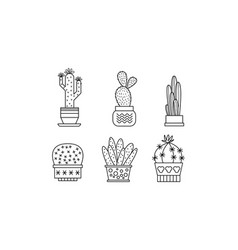 Collection of cactuses and succulents linear vector