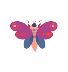cute colorful moth insect top view vector image