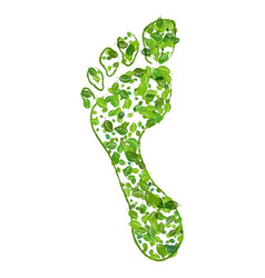 eco green footprint vector image