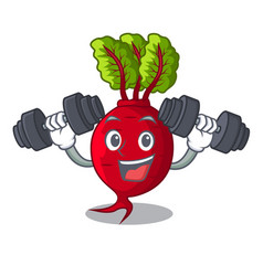 Fitness cartoon fresh harvested beetroots in vector