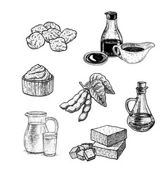 Hand drawn set of soy products vintage vector