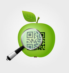 Magnifying glass checking qr-code on green apple vector