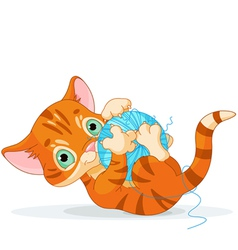 Playful tubby kitten vector