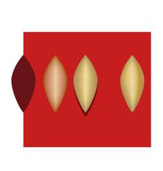 pocket bag design golden metal pattern petal vector image