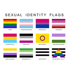 Sexual identity pride flags set lgbt symbols flag vector