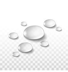 Water drops set isolated on transparent background vector