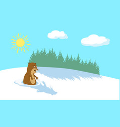 winter background with pine forest sun and clouds vector image