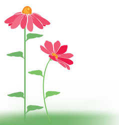 flowers pink vector image vector image