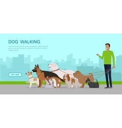 Dog Walking Banner Man Walks with Puppies vector