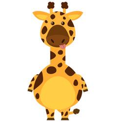 Giraffe with sill face vector