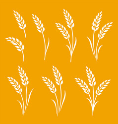 hand drawn set wheat ears icons vector image