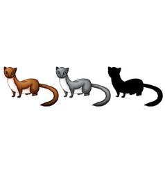 Set of weasel character vector