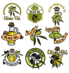 set of olive oil labels design elements for logo vector image vector image