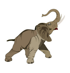 Flat of asian elephant vector