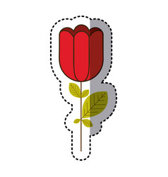 red rose with square petals icon vector image
