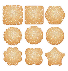 set of sugar cookies vector image