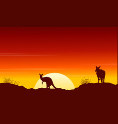 Collection kangaroo at sunset silhouette scenery vector