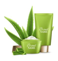Aloe vera skin care cosmetics vector