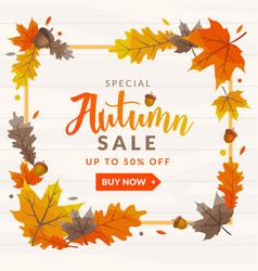 autumn sale discount template vector image