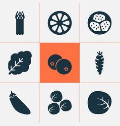 food icons set with mandarin kiwano brussels vector image